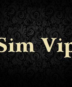 Sim số Vip
